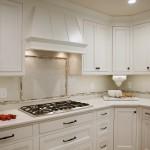 best canton kitchen designer